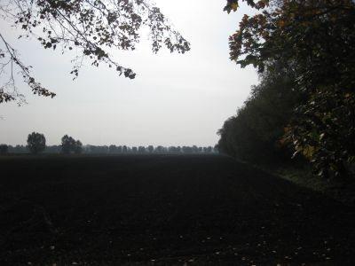 Działka inna na sprzedaż Kazimierzowo, Kazimierzowo  21734m2 Foto 5