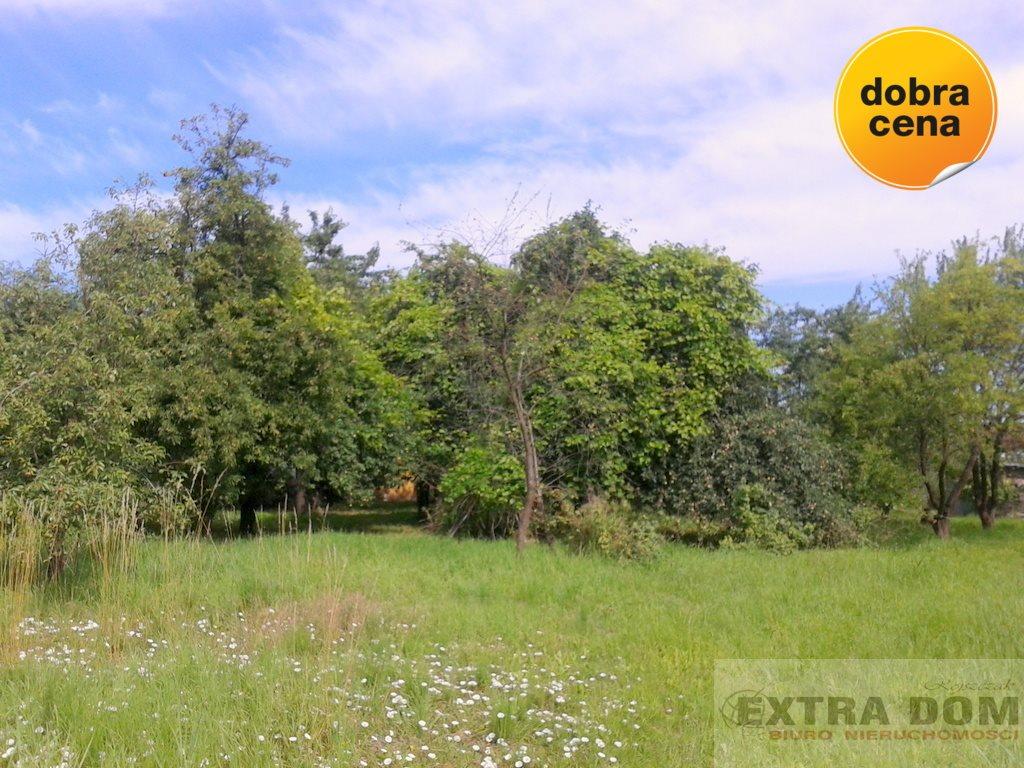Działka inna na sprzedaż Nowogard  4277m2 Foto 3