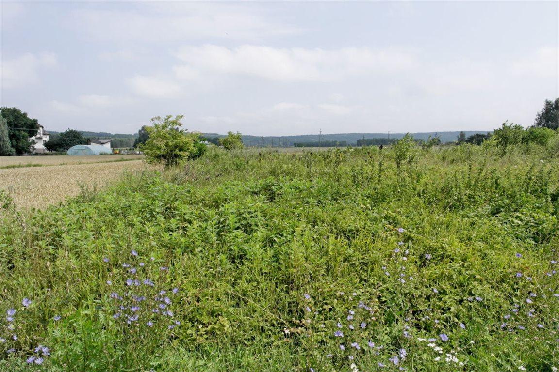 Działka rolna na sprzedaż Zakurzewo  1249m2 Foto 1