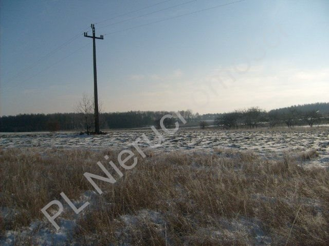 Działka rolna na sprzedaż Mszczonów  9700m2 Foto 6