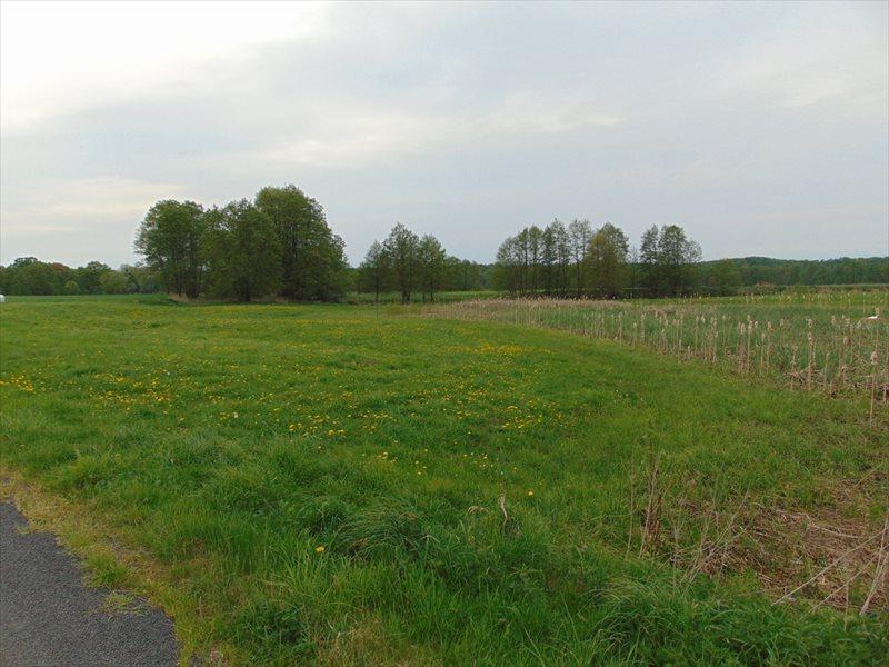 Działka rolna na sprzedaż Kępa Mała  15000m2 Foto 5
