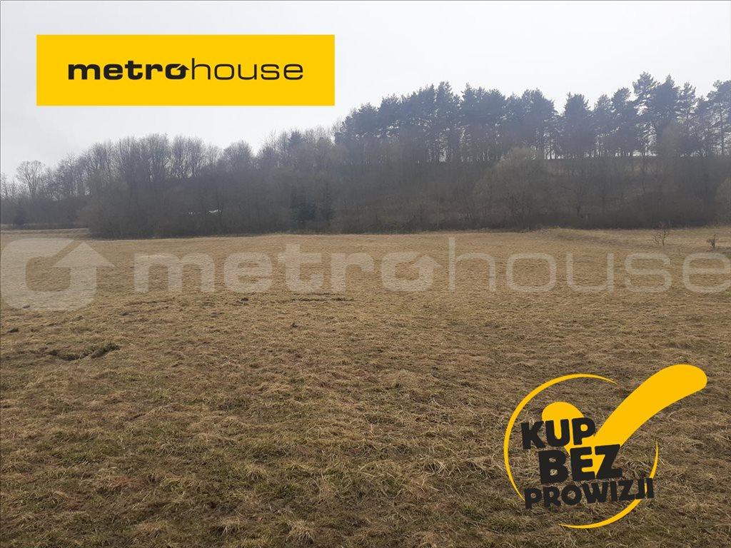 Działka rolna na sprzedaż Rzepedź, Komańcza  5000m2 Foto 1