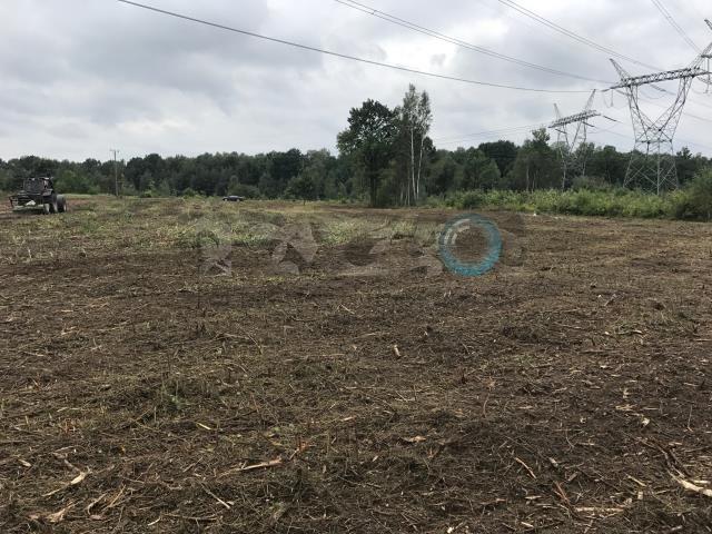 Działka inwestycyjna pod dzierżawę Nowy Konik  9500m2 Foto 2