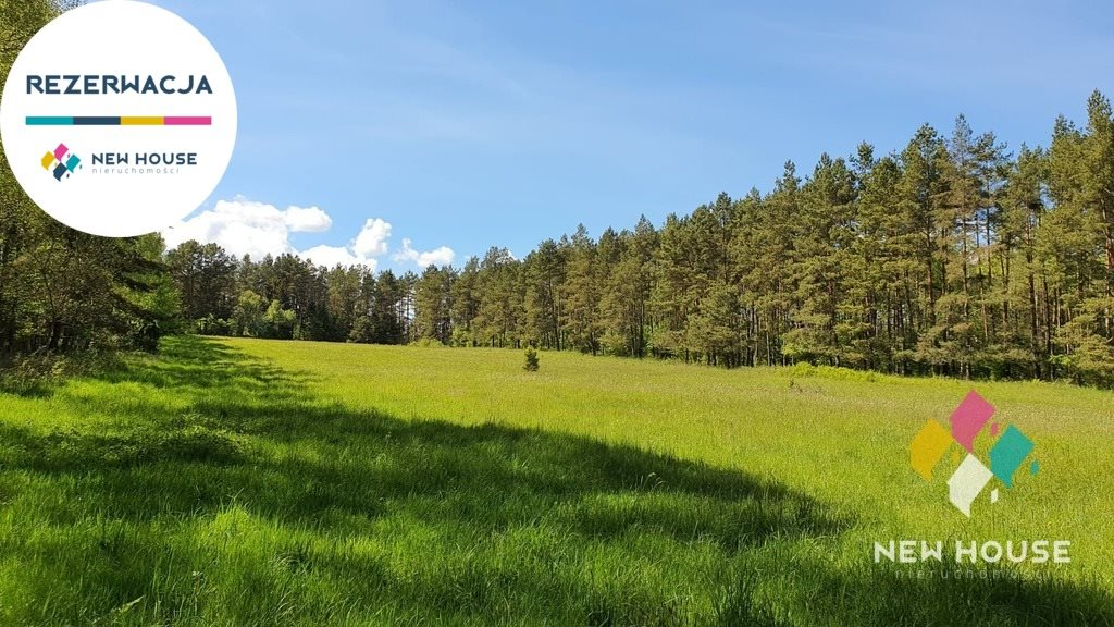 Działka rolna na sprzedaż Spręcowo  14900m2 Foto 1