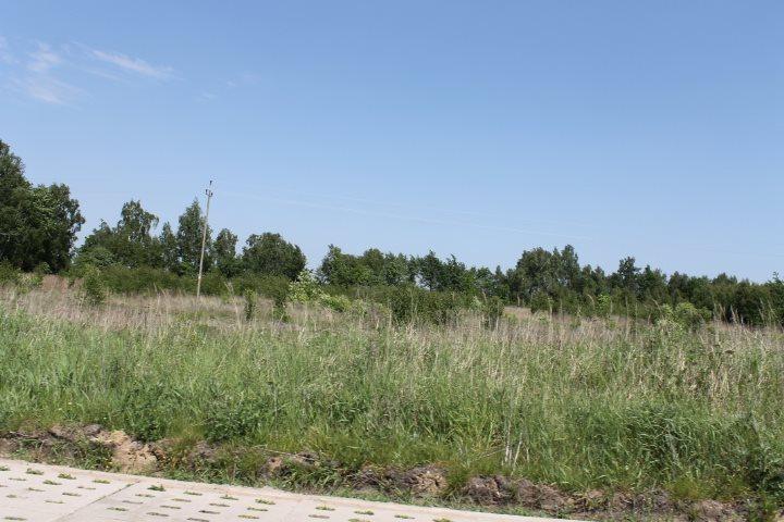 Działka rolna na sprzedaż Łódź, Widzew, Stare Moskule, Opolska  14997m2 Foto 6