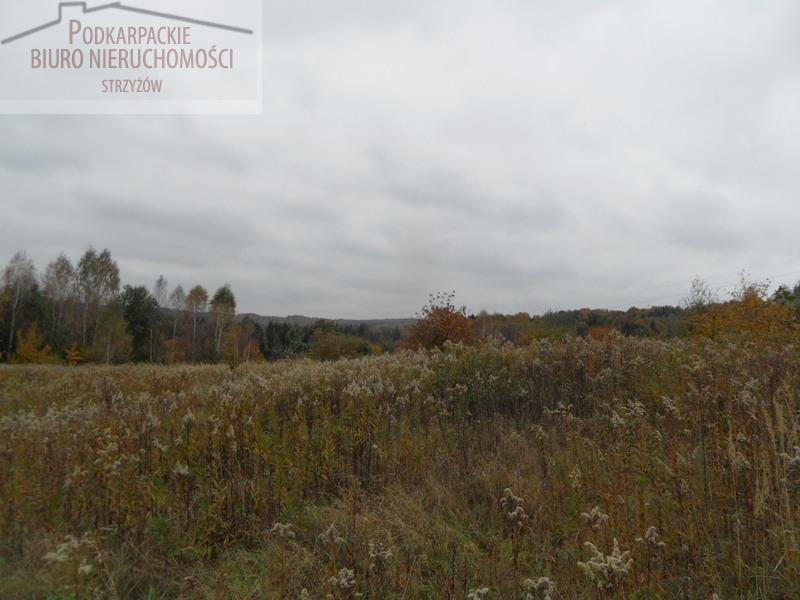 Działka budowlana na sprzedaż Glinik Zaborowski  5580m2 Foto 4