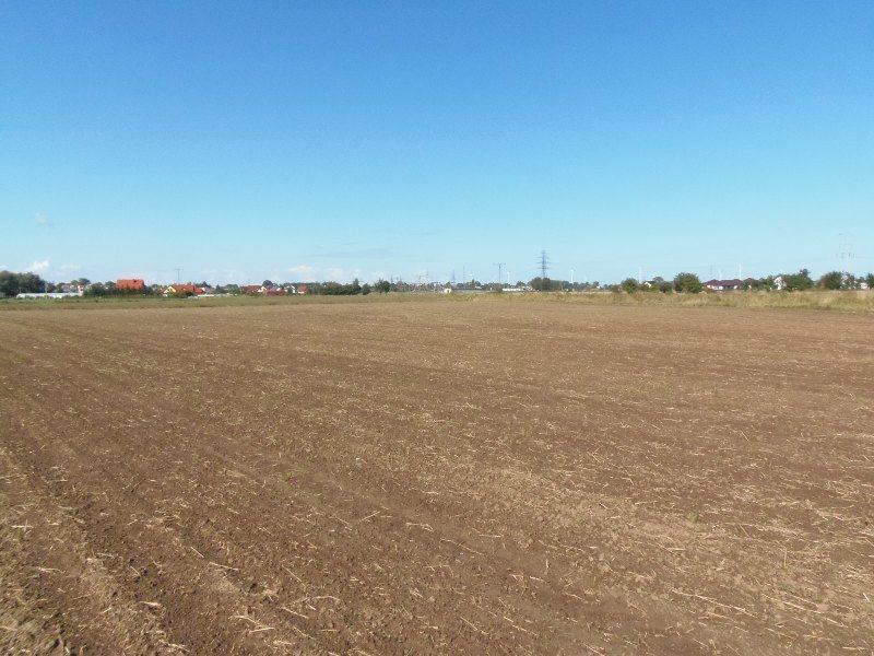 Działka inna na sprzedaż Nowy Dwór Gdański, Zagonowa  9066m2 Foto 1