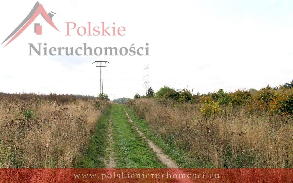 Działka komercyjna na sprzedaż Lublewo Gdańskie, gen. Józefa Wybickiego  5365m2 Foto 6