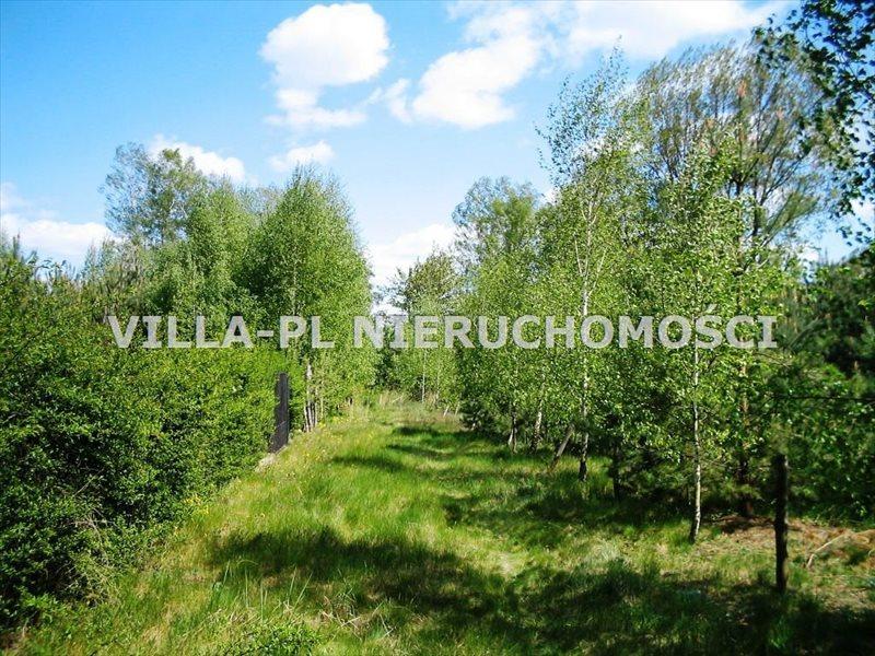 Działka leśna na sprzedaż Zieleniew  44780m2 Foto 4