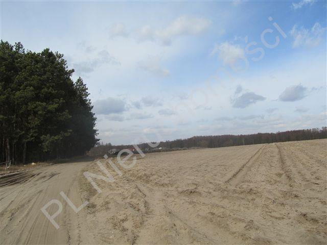 Działka rolna na sprzedaż Transbór  11200m2 Foto 2