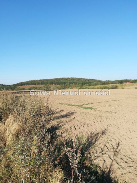 Działka budowlana na sprzedaż Świebodzice, ok. 5 km od Świebodzic  1132m2 Foto 3