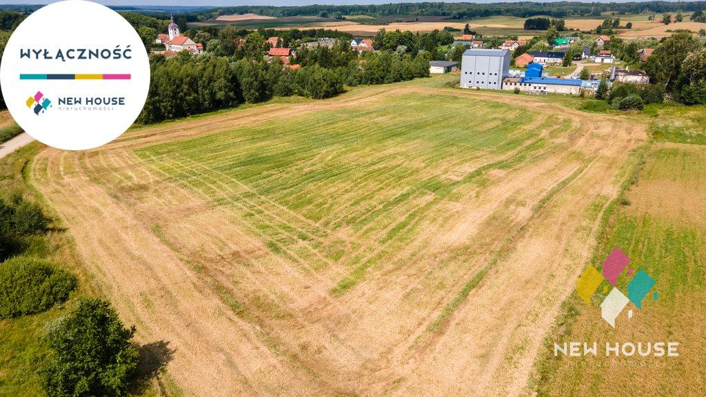 Działka rolna na sprzedaż Boguchwały  19200m2 Foto 6