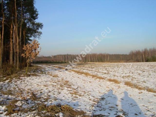 Działka rolna na sprzedaż Stanisławów  3000m2 Foto 2