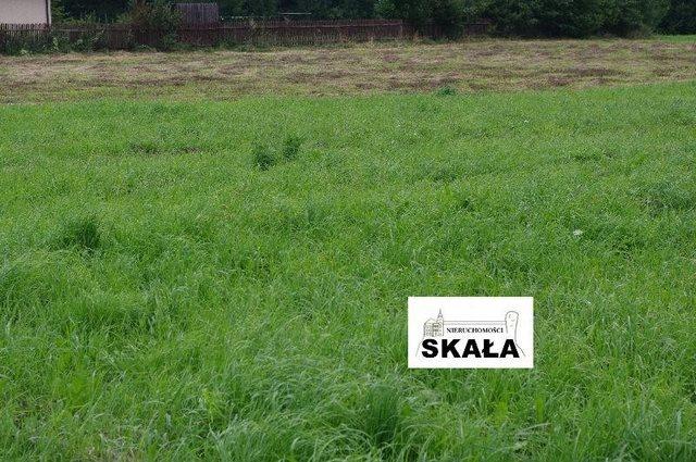 Działka rolna na sprzedaż Sąspów  5400m2 Foto 3
