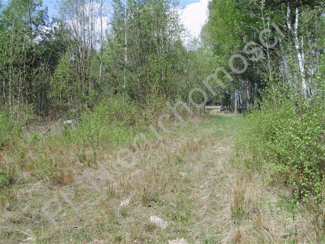 Działka rolna na sprzedaż Zdzieszyn  25726m2 Foto 4