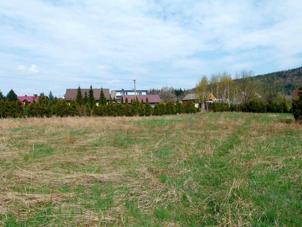 Działka inwestycyjna na sprzedaż Kozubnik  5800m2 Foto 6