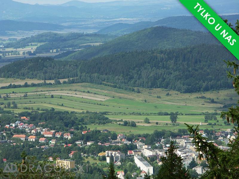 Dom na sprzedaż Lądek-Zdrój  281m2 Foto 4