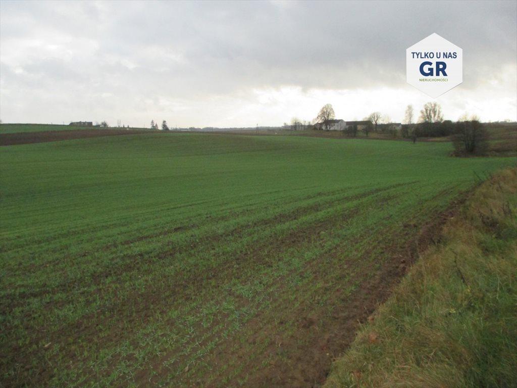 Działka rolna na sprzedaż Kościerzyna  32000m2 Foto 1