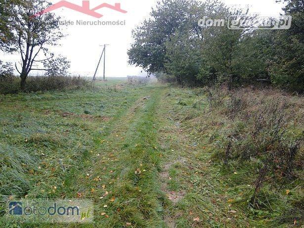 Działka rolna na sprzedaż Szufnarowa  22900m2 Foto 1