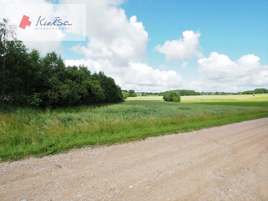 Działka rolna na sprzedaż Dobrzyniewo Kościelne  10378m2 Foto 7