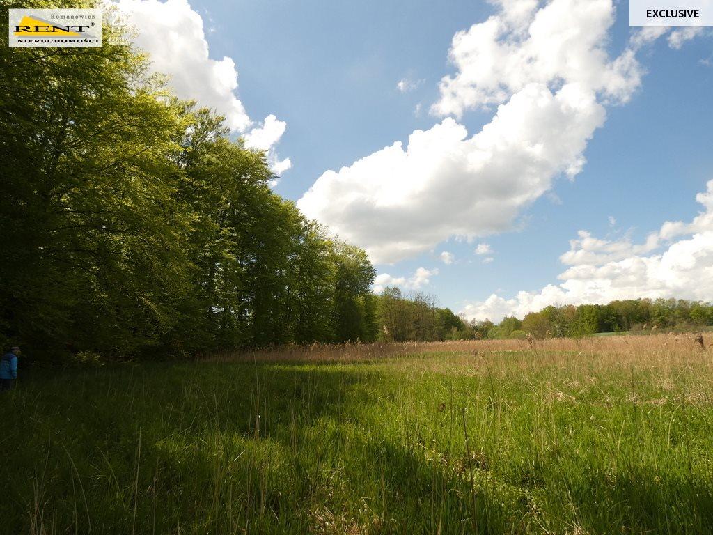 Działka siedliskowa na sprzedaż Błotno  18300m2 Foto 2