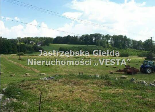Działka inna na sprzedaż Jastrzębie-Zdrój, Cisówka  4290m2 Foto 1