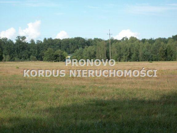 Działka leśna na sprzedaż Wojtkowa, Trzcianiec  1958400m2 Foto 3