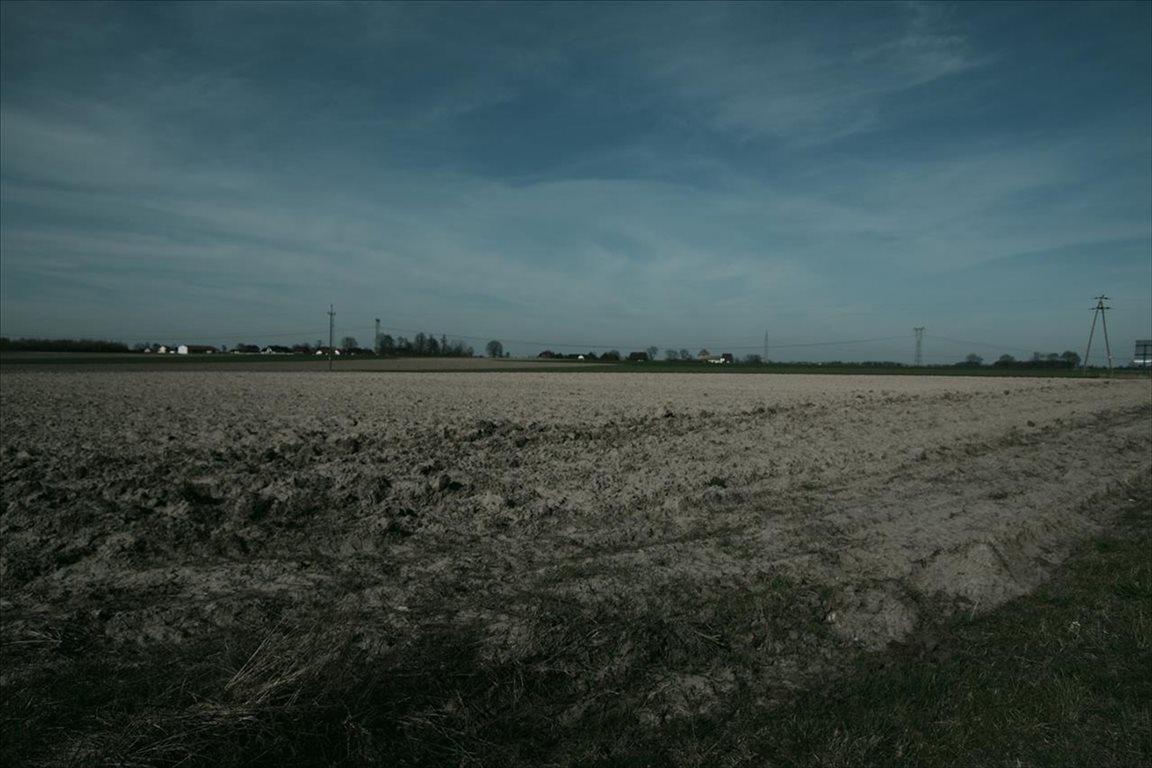 Działka budowlana na sprzedaż Borowa, Długołęka  10600m2 Foto 3