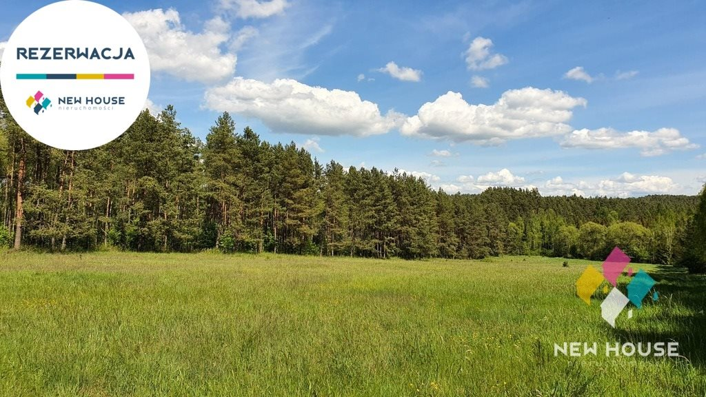 Działka rolna na sprzedaż Spręcowo  14900m2 Foto 3