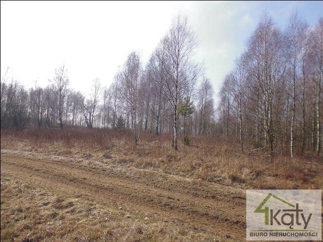 Działka rolna na sprzedaż Czarny Kierz, Czarny Kierz, Czarny Kierz  16500m2 Foto 3
