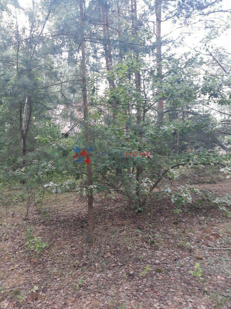 Działka leśna z prawem budowy na sprzedaż Jeziórko  1070m2 Foto 4