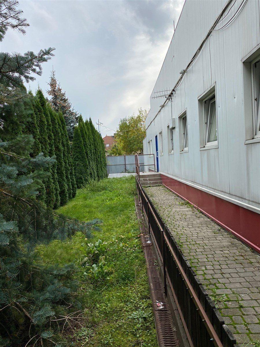 Lokal użytkowy na sprzedaż Reguły, ul. Działkowa  1253m2 Foto 12