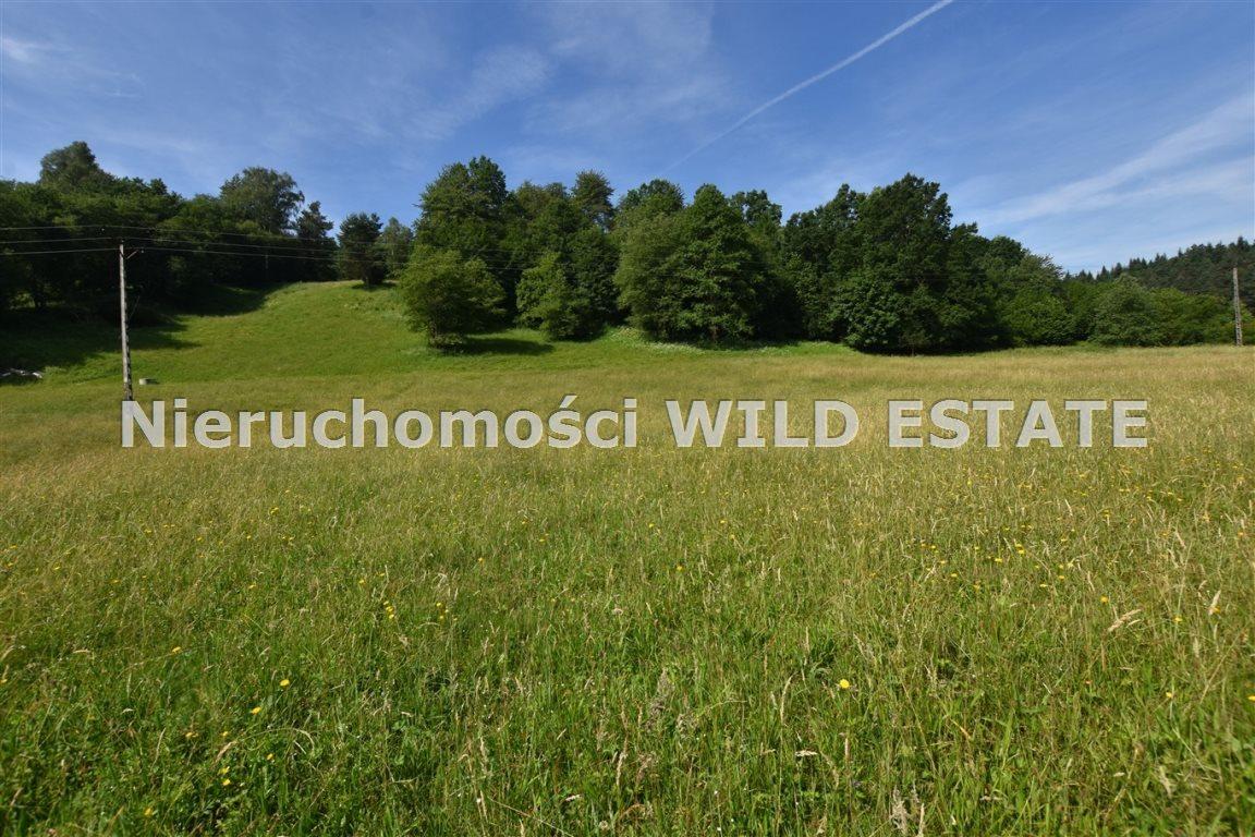 Działka rolna na sprzedaż Lesko, Łączki  4297m2 Foto 3