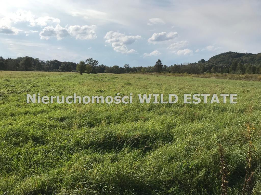Działka rolna na sprzedaż Trepcza  5800m2 Foto 4