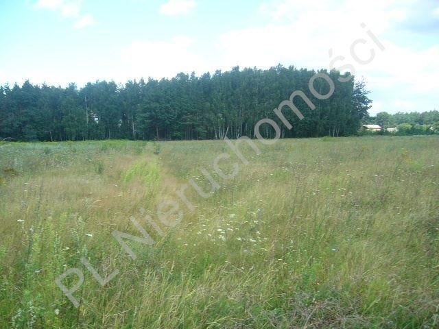 Działka rolna na sprzedaż Grzegorzewice  17200m2 Foto 1