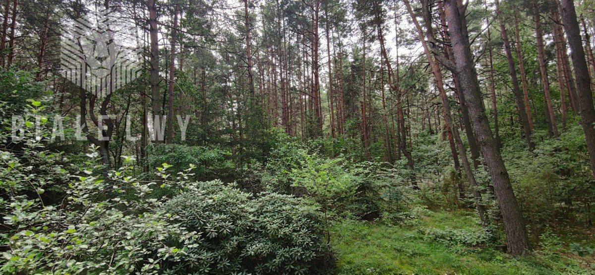 Działka leśna na sprzedaż Radachówka  1200m2 Foto 2