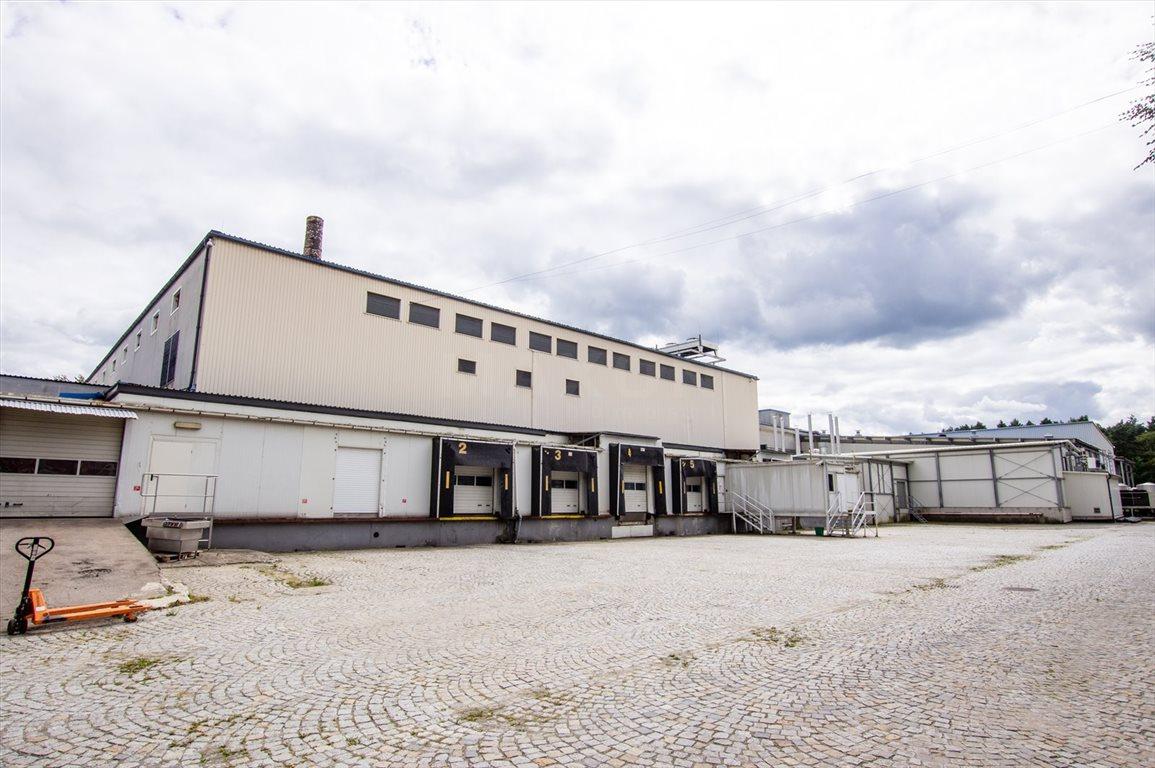 Lokal użytkowy na sprzedaż Chrzanów, ul. Powstańców Styczniowych  267000m2 Foto 7