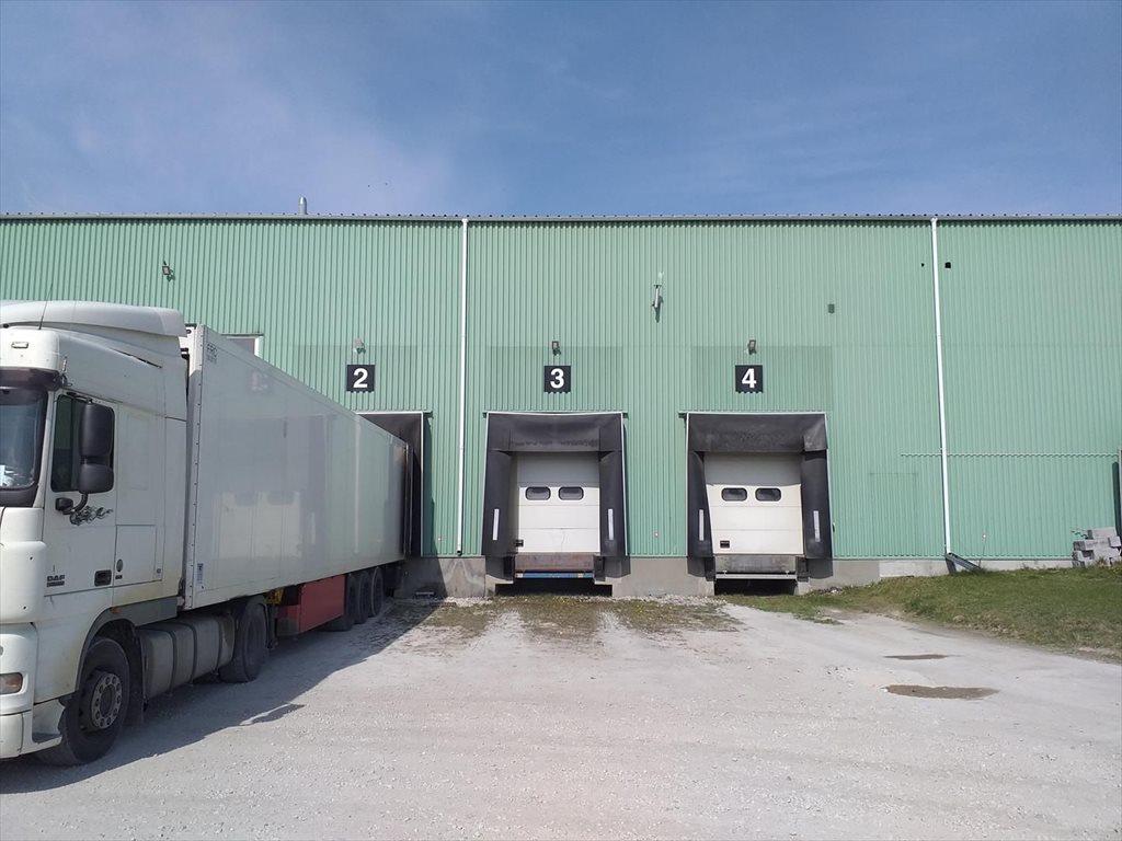 Działka inwestycyjna na sprzedaż Jedlanka  48000m2 Foto 13