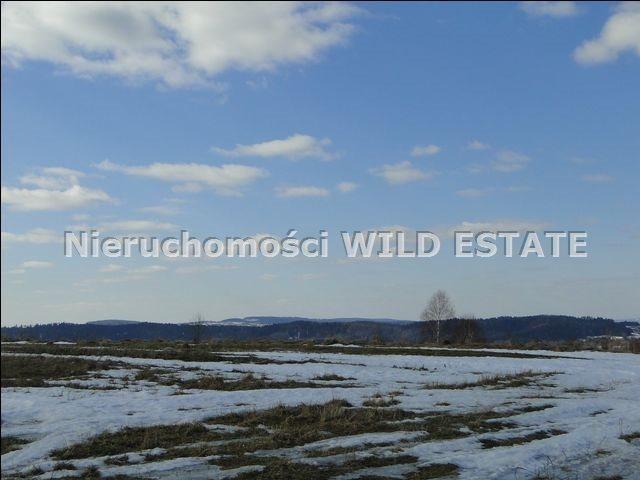 Działka rolna na sprzedaż Lesko, Lesko  4225m2 Foto 6