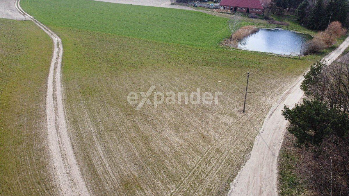 Działka rolna na sprzedaż Potrzanowo  4800m2 Foto 2