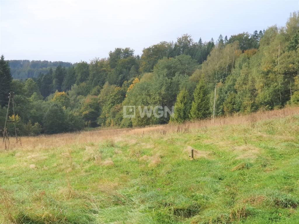 Działka rekreacyjna na sprzedaż Wisła, Jawornik  19000m2 Foto 6