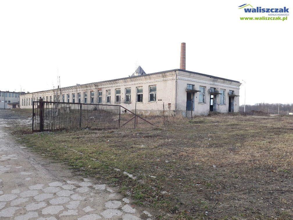 Magazyn na sprzedaż Moszczenica  800m2 Foto 4