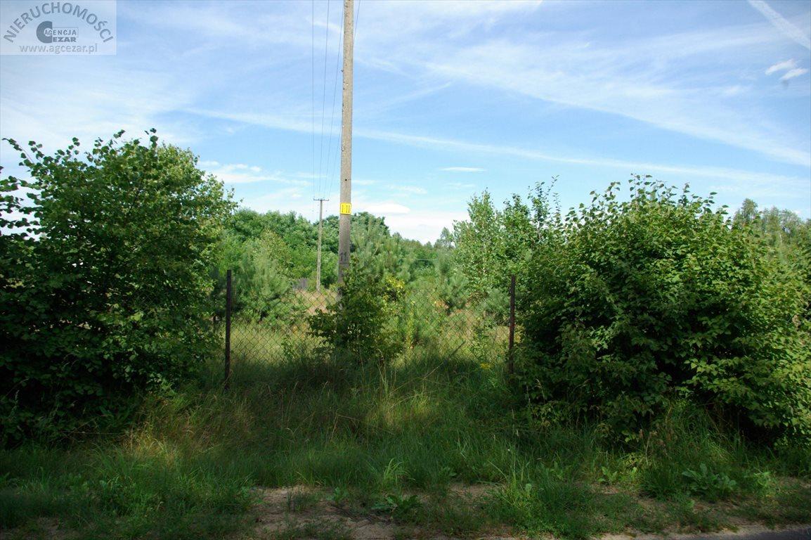 Działka budowlana na sprzedaż Głęboczyca  4017m2 Foto 3