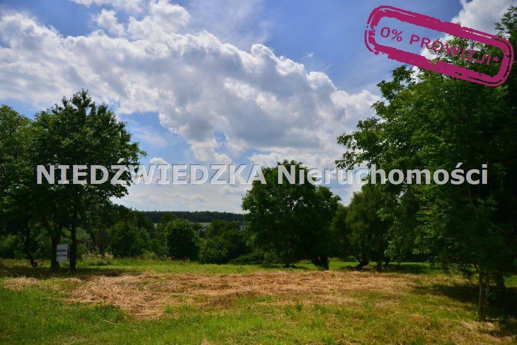 Działka budowlana na sprzedaż Mikołów, Mokre  12507m2 Foto 3