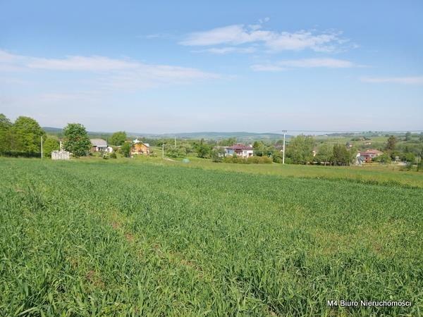Działka rolna na sprzedaż Żeglce  15500m2 Foto 1