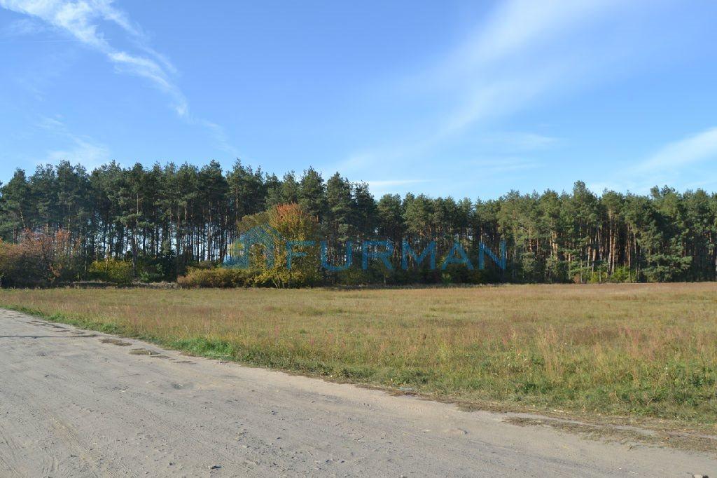 Działka rolna na sprzedaż Gościejewo  45100m2 Foto 1