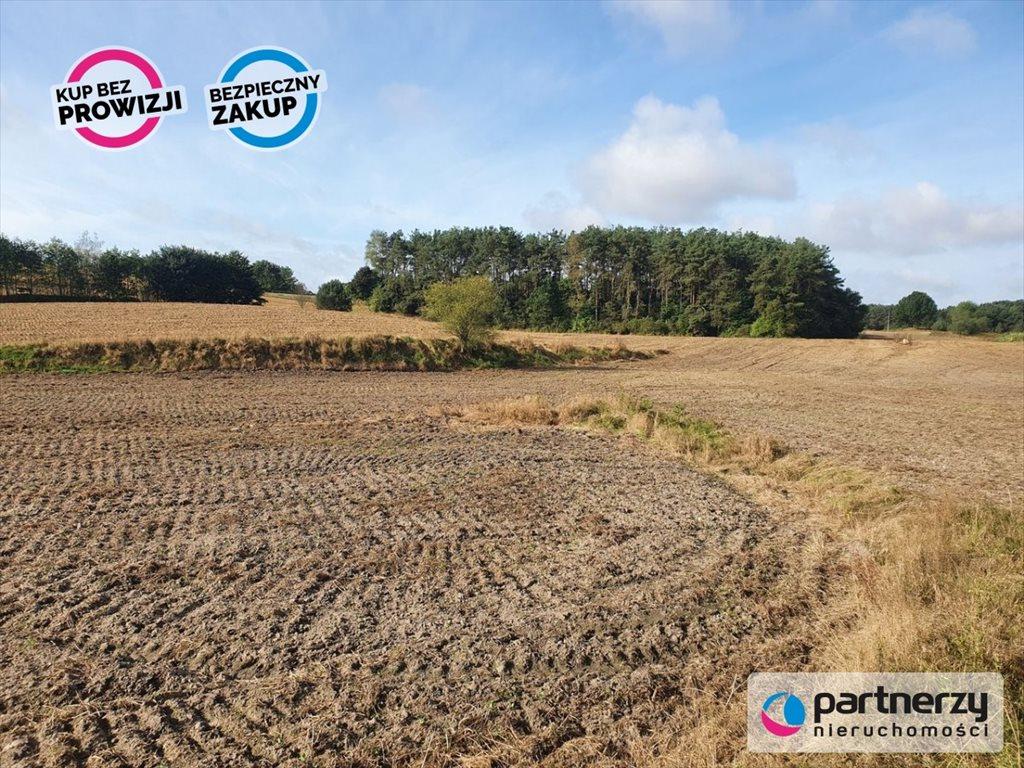 Działka rolna na sprzedaż Chwaszczyno, Rewerenda  1000m2 Foto 2