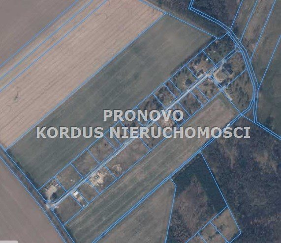 Działka budowlana na sprzedaż Smogolice  1000m2 Foto 5