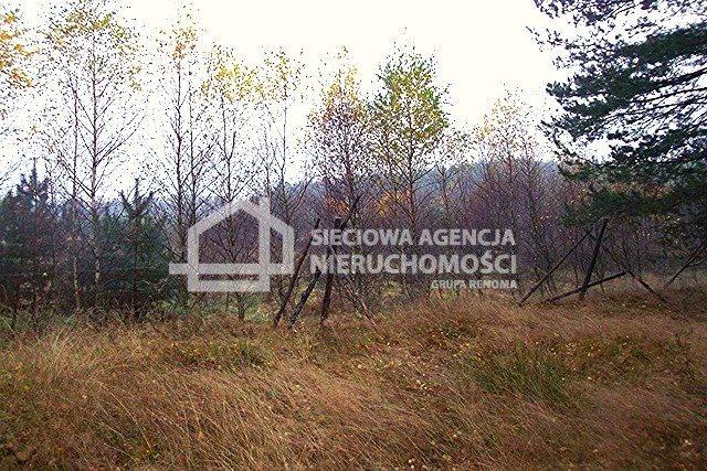 Działka leśna na sprzedaż Skwierawy  64900m2 Foto 12