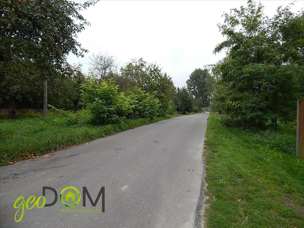 Działka rolna na sprzedaż Horodyszcze-Kolonia  11293m2 Foto 10